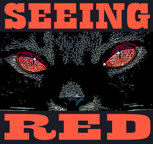 Seeing Red Logo